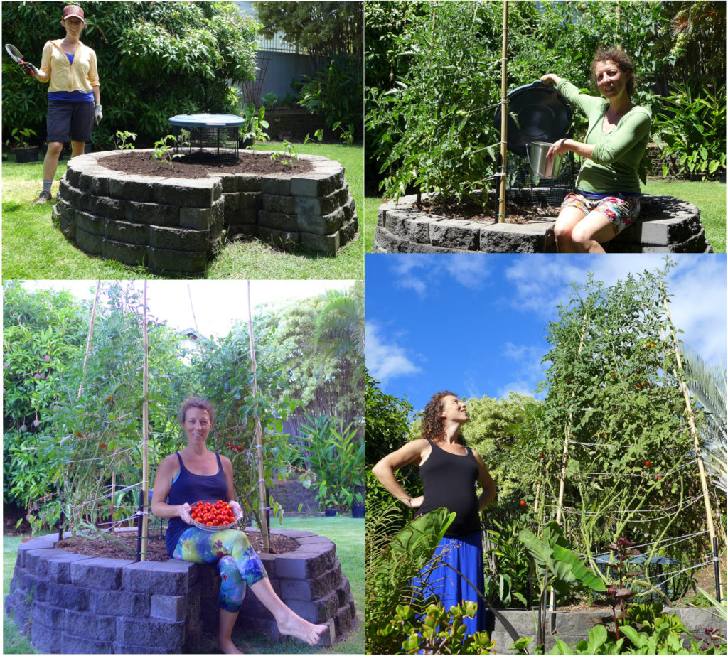 keyhole composting raised bed collage